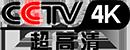 CCTV 4K